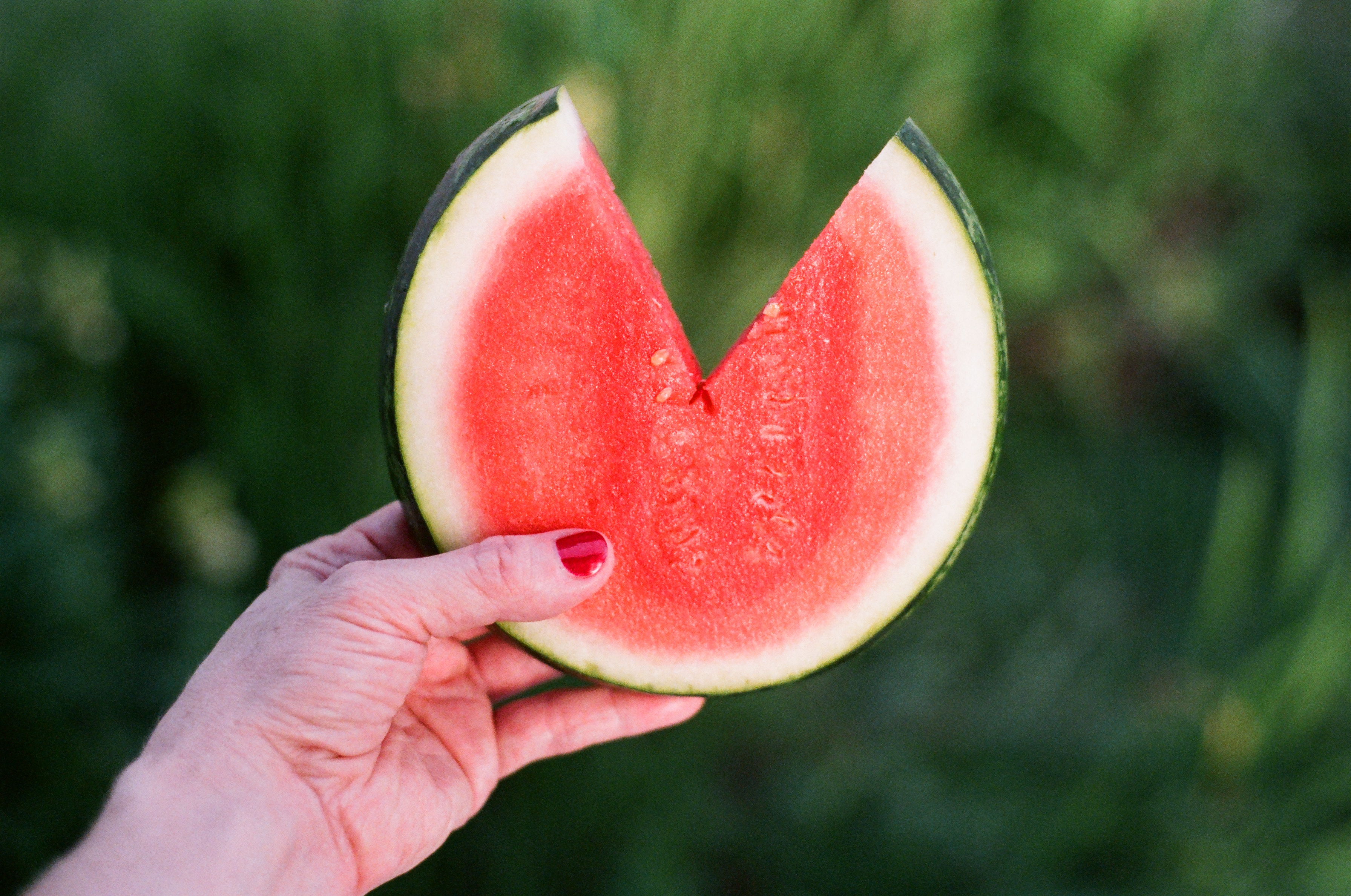 cut watermelon | Nikki Gardner