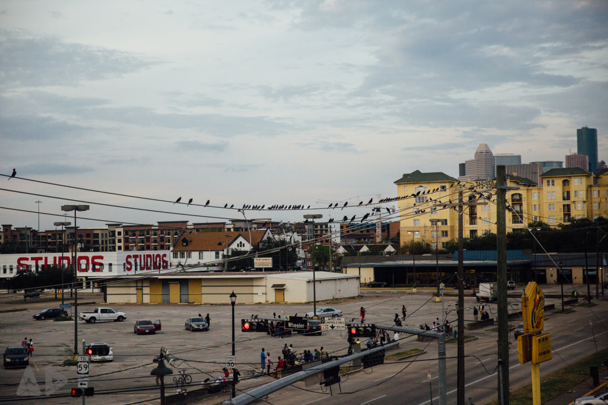 Birds-on-wire.jpg